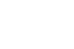 logo Roots
